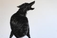 Serie negra. lobo aullando